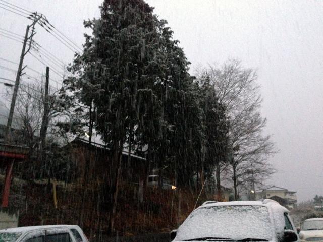 大粒のぼた雪…